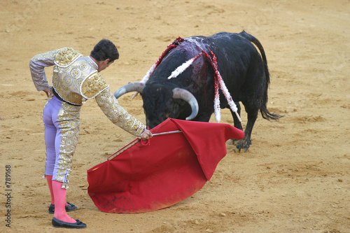 Foto op Plexiglas Stierenvechten bullfighting in seville, spain.