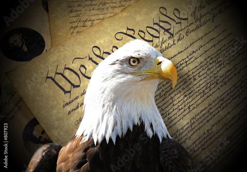 Keuken foto achterwand Eagle eagle