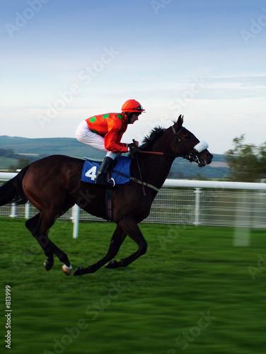 Fotografia racehorse
