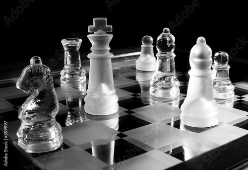 einzelne bedruckte Lamellen - chess b&w (von Ivan Josifovic)