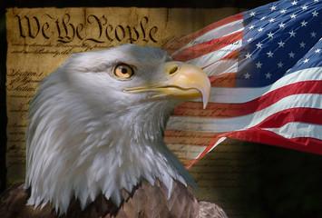Fototapeta Ptaki bald eagle and american flag