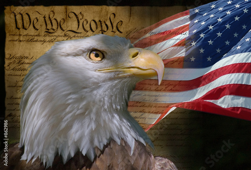 Fotografie, Obraz  bald eagle and american flag
