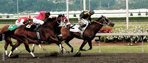 Fototapeta number 6 wins