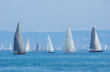 Fototapeta sail-boats on regatta no.2