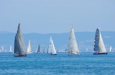 Fototapetasail-boats on regatta no.2