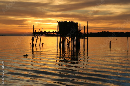 cedar key,levy county,florida,sunset,water,coast,i #905122