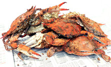 Crab - Cooked Blue Crabs