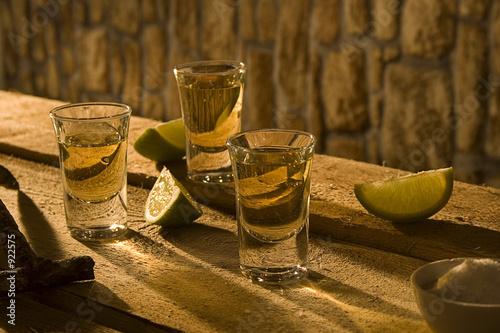 Leinwand Poster tequila i