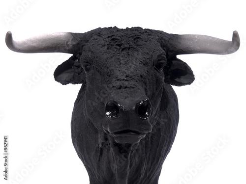 Fotografie, Obraz  black bull