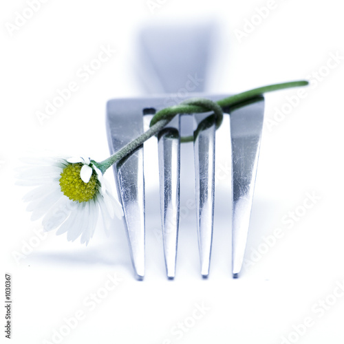 Fotografie, Obraz  fork and flower