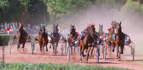 Fotografía horse racing
