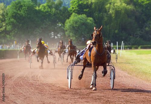 Obraz na płótnie horse racing