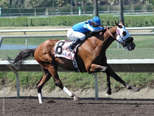 Photo race horse & jockey