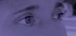 canvas print picture - augen lila/violett