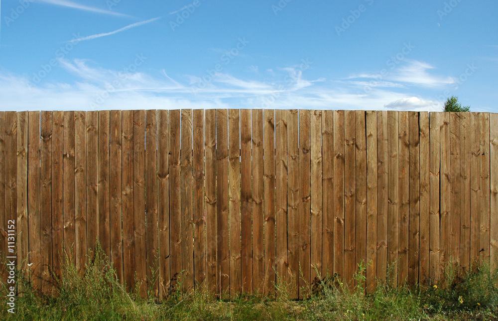 Fototapeta pine fence