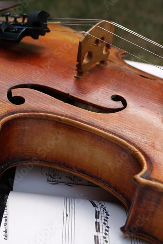 violin © Henri Schmit