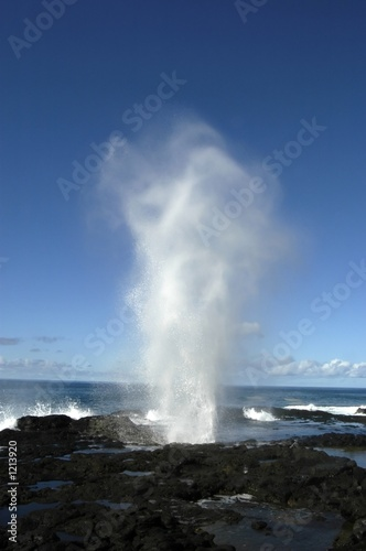 Foto Rollo Basic - spouting horn blow hole (von David Sussman)