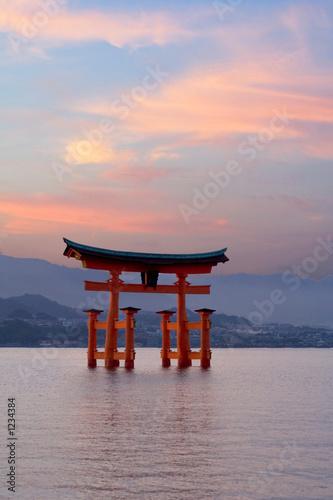 Foto op Plexiglas Japan torri gate at sunset