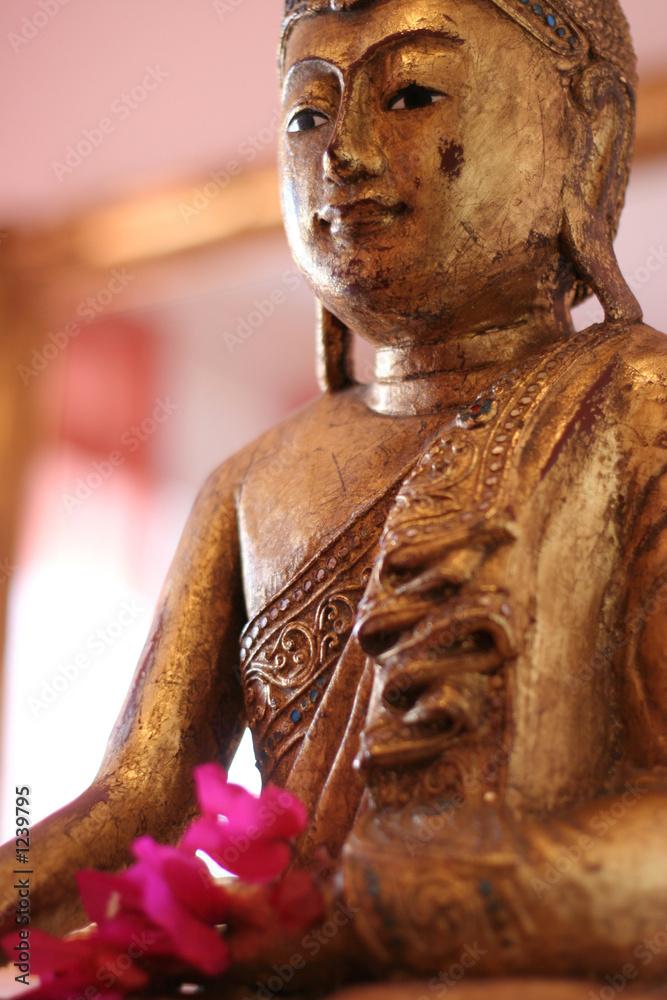 Foto-Stoff bedruckt - goldener buddha 1
