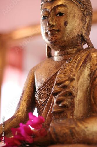 einzelne bedruckte Lamellen - goldener buddha 1 (von Claus Mikosch)