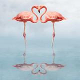 Fototapeta Zwierzęta - making love