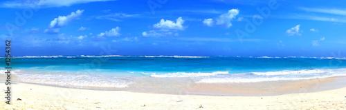 long beach paradise - fototapety na wymiar