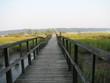 walkway to long island sound