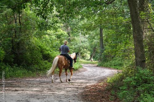 Fotobehang Paardrijden man horseback riding