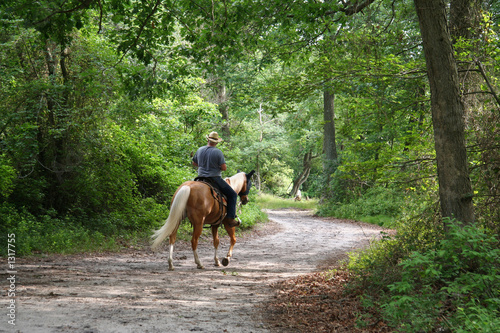 Tuinposter Paardrijden man horseback riding