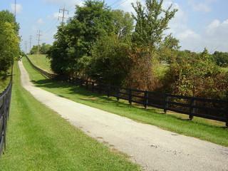 Fototapeta na wymiar rural road