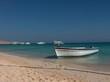 canvas print picture - canot amaré la plage