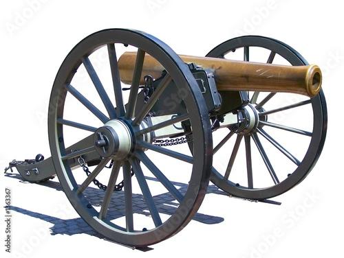 Stampa su Tela cannon