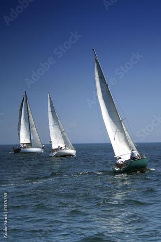 Poster Zeilen start of a sailing regatta