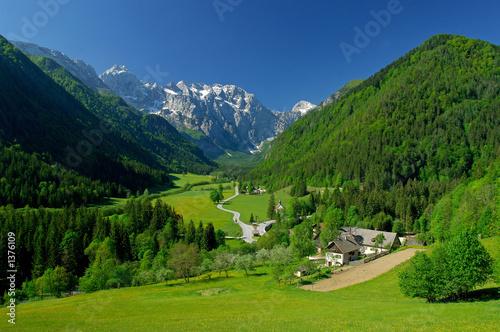 wiosna-w-dolinie-alpejskiej