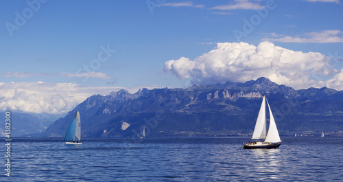Cadres-photo bureau Voile sailing on geneva lake