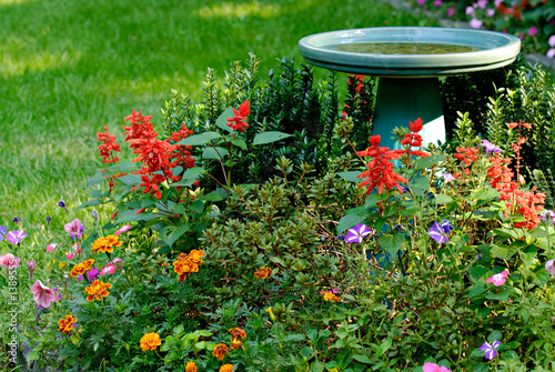 bird bath and flower garden in yard Canvas Print