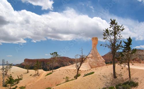 Keuken foto achterwand Baobab paysage désertique