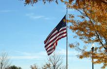 Flag In Fall