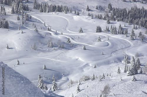snow tracks Canvas-taulu