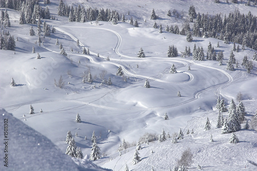 Fotografie, Tablou  snow tracks