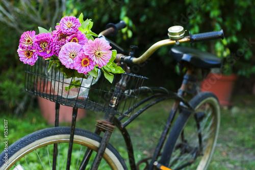 In de dag Fiets bicycle with flowers
