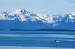 canvas print picture - arctic wilderness