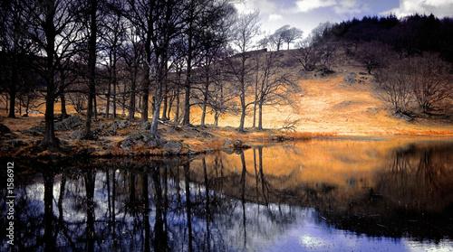 Fotografia lake district national park cumbria england uk