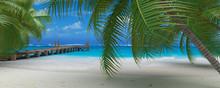 Ponton Palm Caraibes