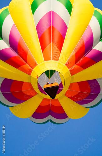 In de dag Ballon flying high