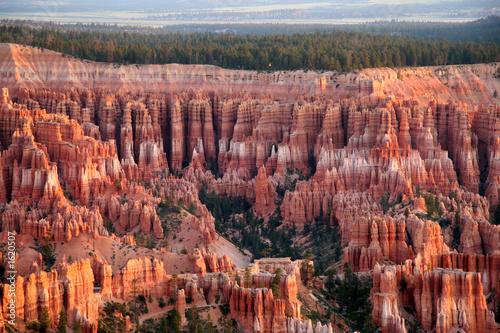 bryce canyon amphitheater Fototapeta