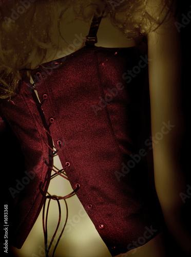 Tableau sur Toile rote corsage
