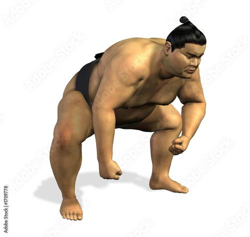 Fotografía  sumo wrestler 2