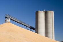 Corn At The Grain Elevator