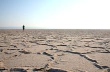 Walker In The Desert